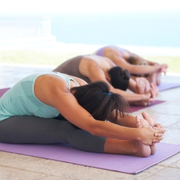 Yoga en Barcelona y Pilates en Madrid. Las actividades estrella de GymForLess