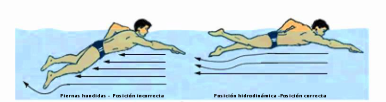 posición-hidrodinamica-crol